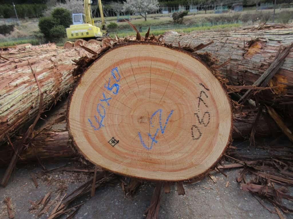 末口の最大径と最小径が6㎝以上差ある原木